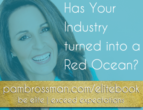 Are You In A Red Ocean Niche?