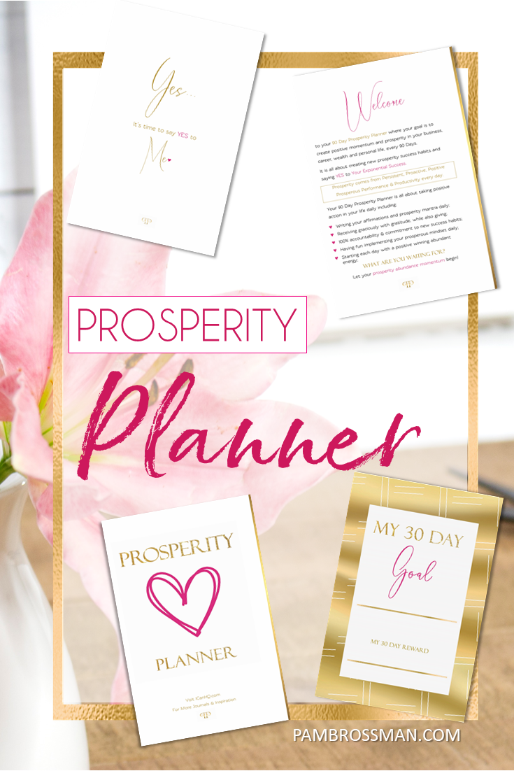 Prosperity Planner Binder Pack